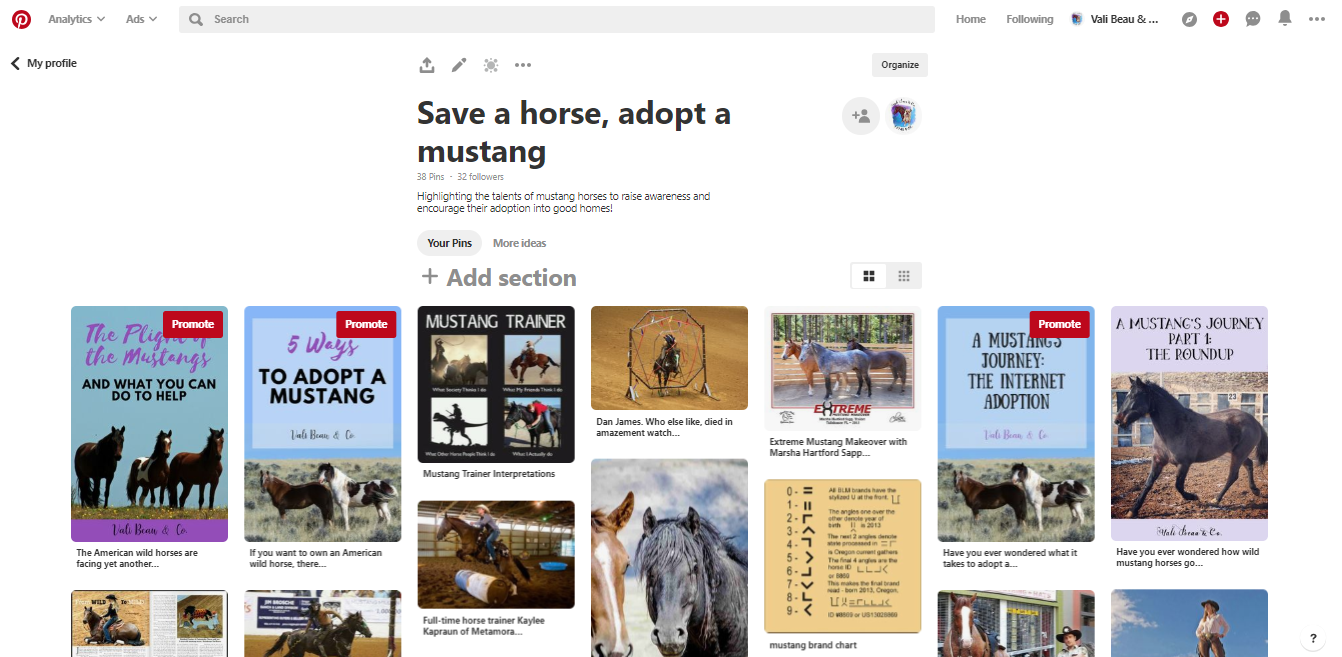 Screenshot of Pinterest board Save a horse, adopt a mustang from Vali Beau & Co.