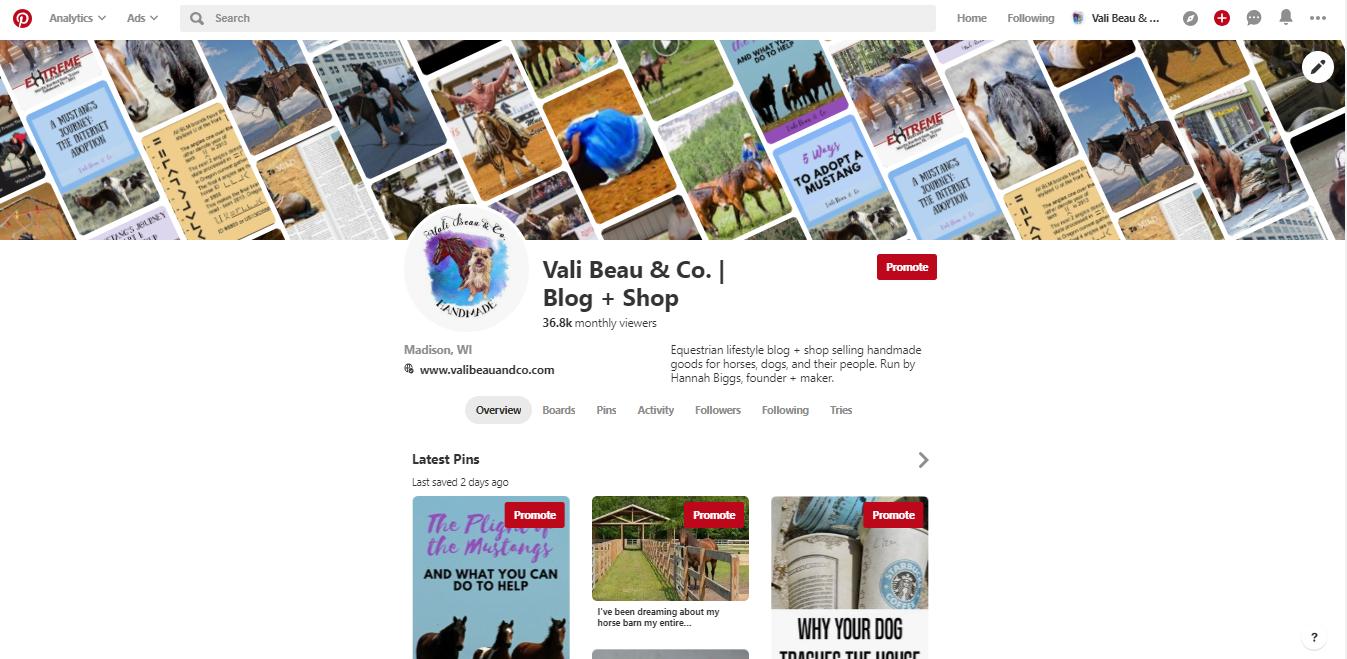 Screenshot of the Pinterest profile of Vali Beau & Co.