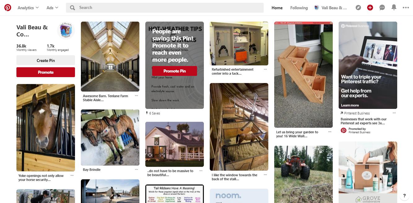 Screenshot of the Pinterest Smart Feed for Vali Beau & Co.